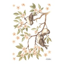 Wandsticker 'Branch & Sparrows' von Lilipinso